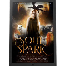 iPad - Soul Spark Anthology 500